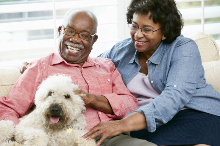 18735682 - happy senior couple sitting on sofa with dog